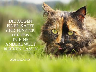 Tolle deutsche gedichte