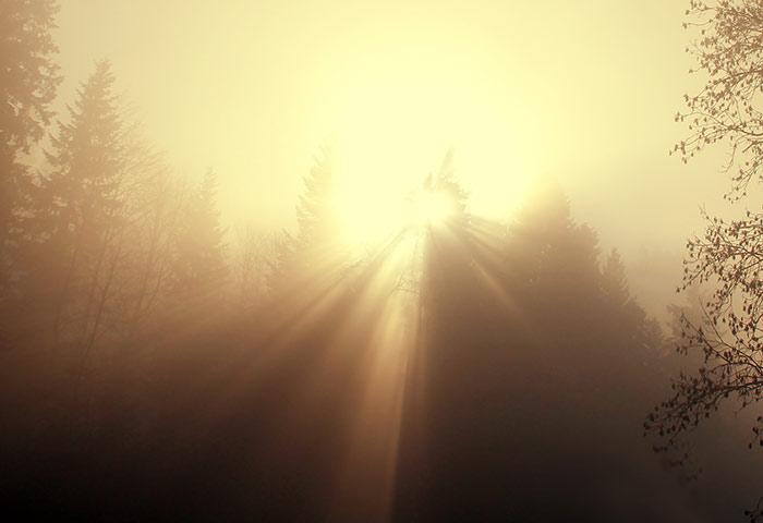 Schöne Naturbilder Kostenlose Und Lizenzfreie Fotos Sofort Und