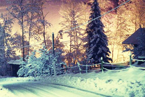 Weihnachtsbild Kostenlos Weihnachts Foto Gratis