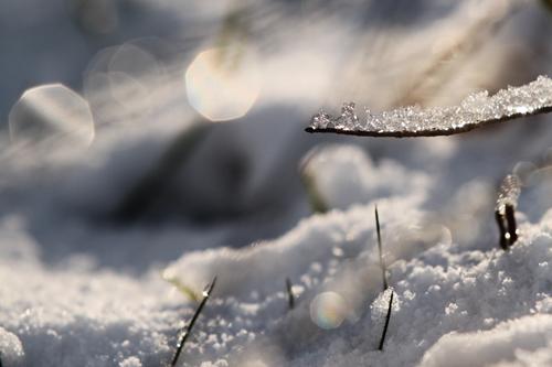 Winterbild - Foto Wint...